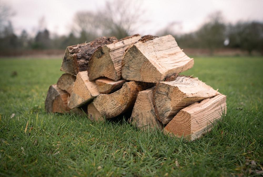 firewood (1 of 1)-min